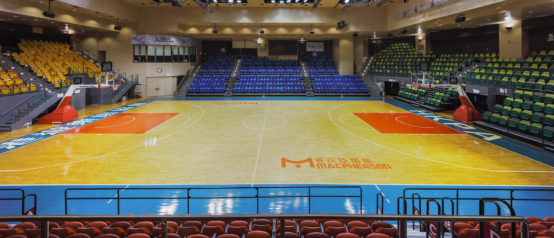 麥花臣體育館(室內設計)